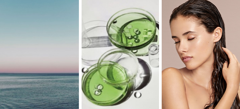 The sea, A representation of the science elements in the eksperience products, A woman's wet hair after applying an eksperience hair treatment